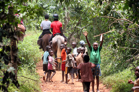 Kids follow a horse safari in the forest