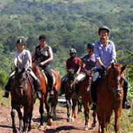 2hr mixed group horse ride